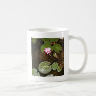 WATER LILY PONDS COFFEE MUG