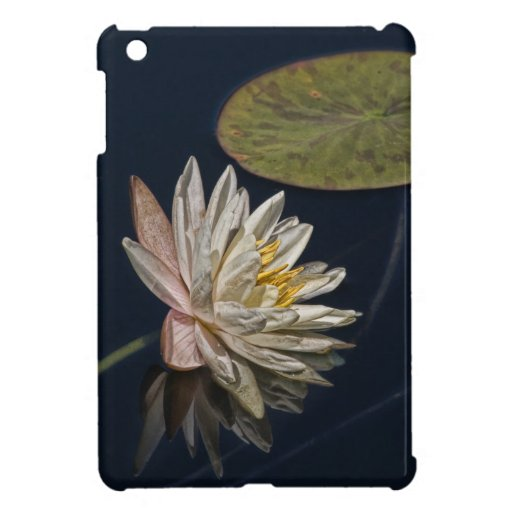 Water Lily Reflection iPad Mini Cases