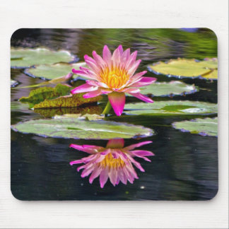 Water Lily Reflection Mouse Pad