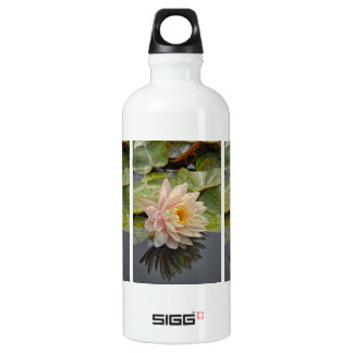 Water Lily Single Pink Reflection Aluminum Water Bottle