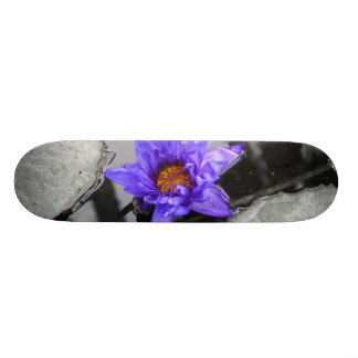 Water Lily Skateboard Deck