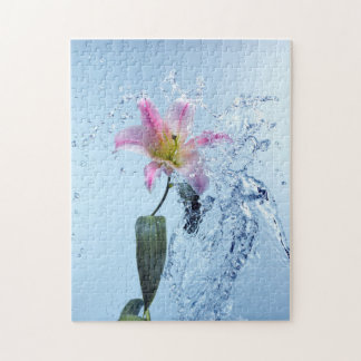 Water Lily Splash Puzzle