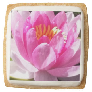 Water Lily Square Shortbread Cookie