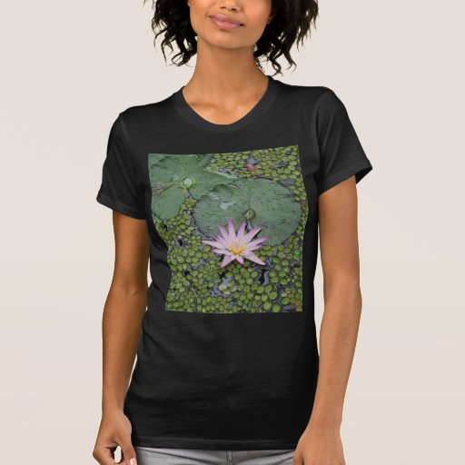 Water Lily Tee Shirts