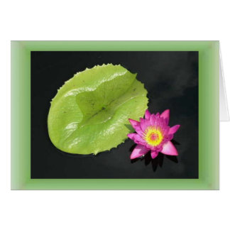 Water Lily Too Card