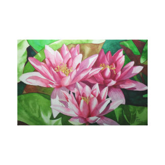 Water Lily Trilogy Stretched Canvas Prints