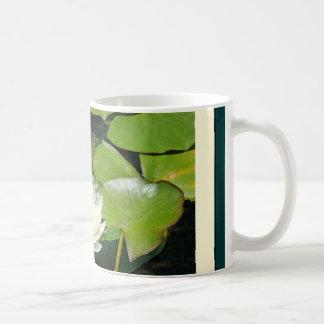 Water Lily Turtle Mug