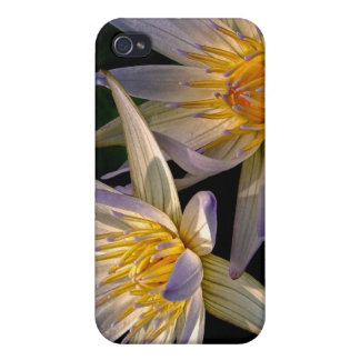 Water Lily Twins #1 iPhone 4 Universal Hard Case Covers For iPhone 4