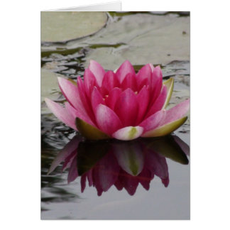 Water Lily Wedding Card