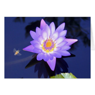 Water Lily with Bee Get Well Card