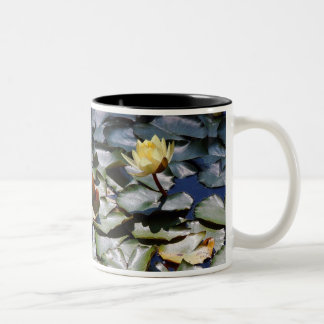 Water Lilypads Lily Mug