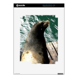 Water Lion Decal For iPad 2