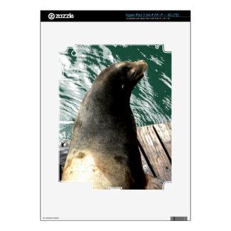 Water Lion iPad 3 Decal