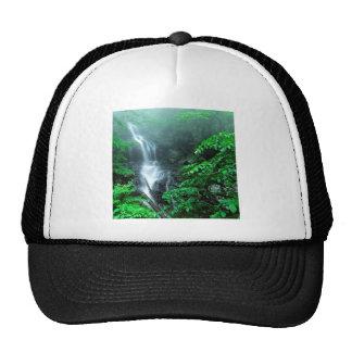 Water Lower Doyles River Falls Shenandoah Mesh Hat