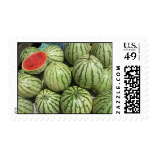 Water Melon Stamps