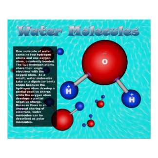 Water Molecules Poster