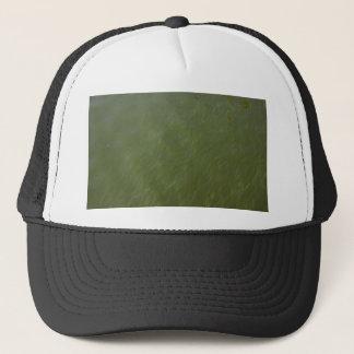 Water, near shore. trucker hat