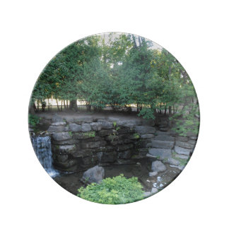 Water Oasis Porcelain Plate