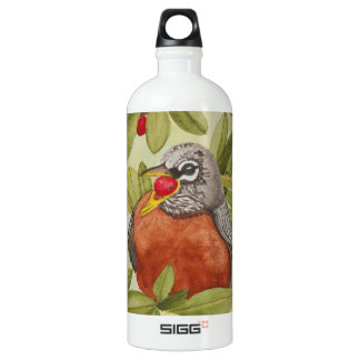 Water of Red Robin Eating Red Berries Aluminum Water Bottle