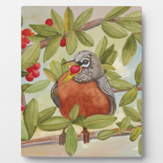 Water of Red Robin Eating Red Berries Plaque