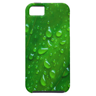 Water on a Leaf iPhone 5 Covers