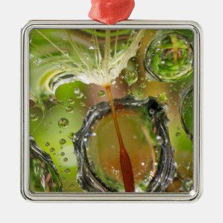 Water on dandelion seed, CA Metal Ornament