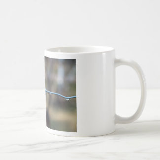 Water On The Fence Coffee Mug