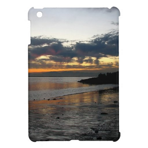 Water Out For The Tide iPad Mini Cover
