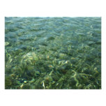 Water over Sea Grass I Blue and Green Nature Photo