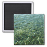 Water over Sea Grass I Blue and Green Nature Photo 2 Inch Square Magnet