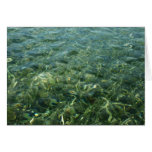Water over Sea Grass I Blue and Green Nature Photo Greeting Card