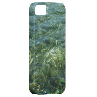 Water over Sea Grass I Blue and Green Nature Photo iPhone SE/5/5s Case