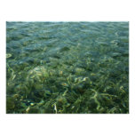 Water over Sea Grass I Blue and Green Nature Photo Poster