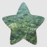 Water over Sea Grass I Blue and Green Nature Photo Star Sticker