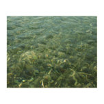 Water over Sea Grass I Blue and Green Nature Photo Wood Wall Art
