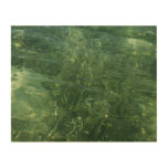 Water over Sea Grass II (Blue and Green) Photo Wood Wall Decor