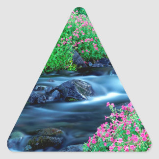Water Paradise River Mount Rainier Triangle Sticker