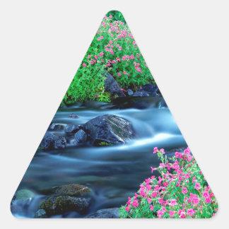Water Paradise River Mount Rainier Triangle Sticker