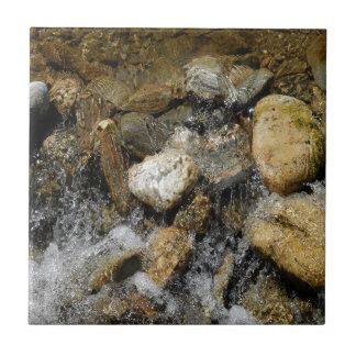 Water Pebble Stream Ceramic Tiles