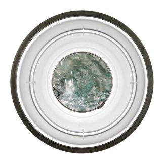Water Pet Bowl
