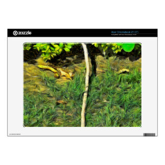 Water pipe in a garden decal for acer chromebook