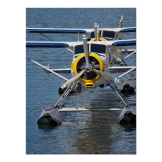 Water Plane Poster