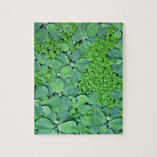 Water plant jigsaw puzzle