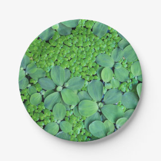 Water plant paper plate