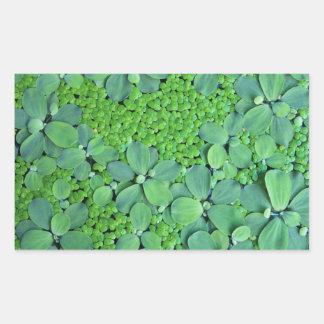 Water plant rectangular sticker
