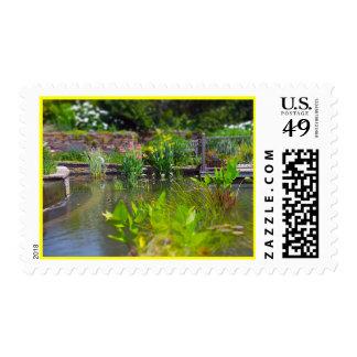 Water Plants in Pond Powell Gardens, Kansas City Postage
