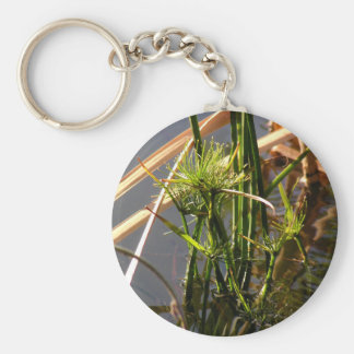 Water plants in the pond keychain