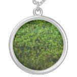 Water plants underwater in pond pendants