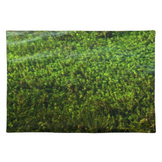 Water plants underwater in pond placemat