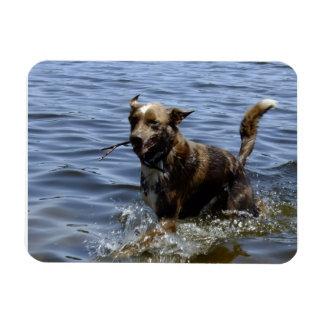Water Play Rectangular Photo Magnet